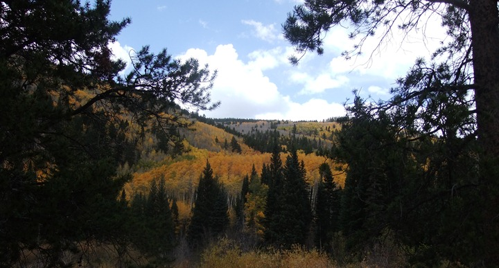 Monarch Crest trail (62)