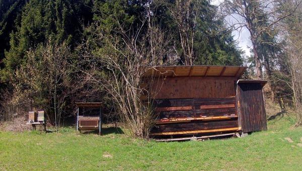 Bee Hives in Vols, Austria