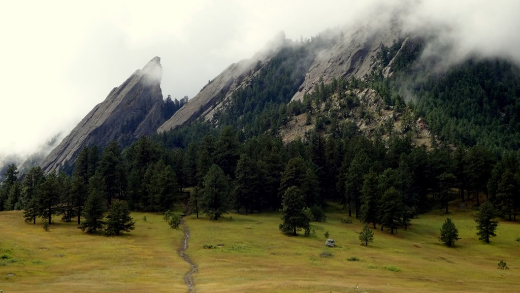 The Flatirons Finally emerged from the mist