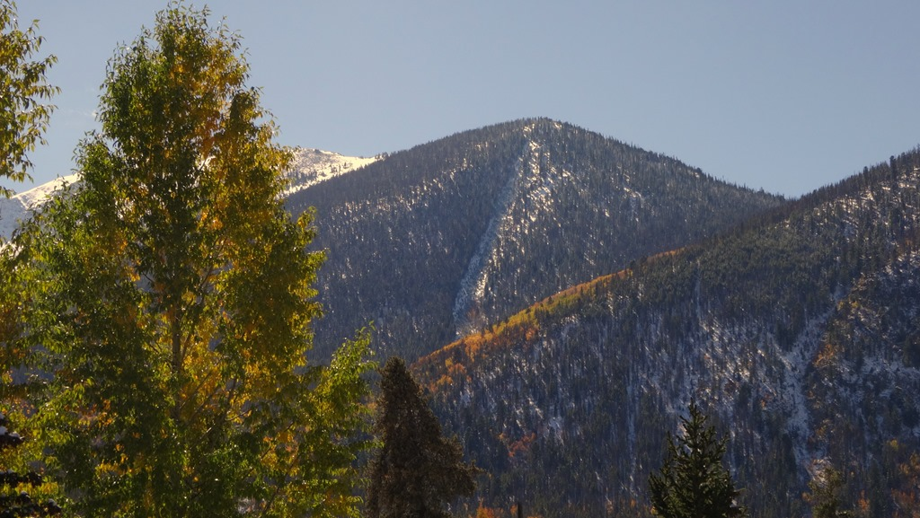 Aspens turning Gold as the first snow settles above Frisco, Colorado